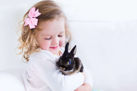 laughing: Happy laughing little girl playing with a baby rabbit, hugging her real bunny pet and learning to take care of an animal. Child on a white couch at home or kindergarten.