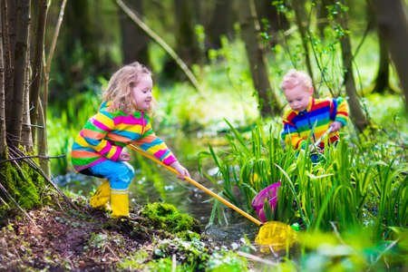 pond: Children playing outdoors. Two preschooler kids catching frog with colorful net. Little boy and girl fishing in a forest river in summer. Adventure kindergarten day trip into wild nature, young explorer hiking and watching animals.