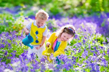 子供の園芸します。屋外で遊ぶ子供たち女の子と男の子、弟と妹、庭仕事、花の植栽、花壇に水をまきます。夏に家族で楽しむ。