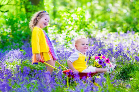 子供の園芸します。屋外で遊ぶ子供たち女の子と男の子、弟と妹、庭仕事、花の植栽、花壇に水をまきます。子プッシュ ホイール手押し車。