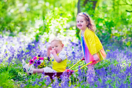 niño empujando: Niños jardinería. Niños que juegan al aire libre. Niña y niño, hermano y hermana, que trabaja en el jardín, plantando flores, regando cama de flores. Niño empujando carretilla. Foto de archivo