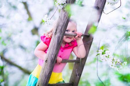 niño trepando: Niña que sube una escalera en un jardín de frutas. Niño que juega en la floración de cerezo y manzano huerto. Vacaciones de los niños en una granja. Campo diversión al aire libre para familias con niños. Preescolar niño explorar la naturaleza salvaje.