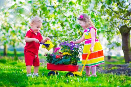 ni�o empujando: Ni�os jardiner�a. Ni�os que juegan al aire libre. Ni�a y ni�o, hermano y hermana, que trabaja en el jard�n, plantando flores, regando cama de flores. Ni�o empujando carretilla. Familia en floraci�n huerto de �rboles frutales. Foto de archivo