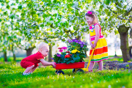 Kids gardening. Children playing outdoors. Little girl and baby boy, brother and sister, working in the garden, planting flowers, watering flower bed. Child pushing wheel barrow. Family in blooming fruit tree orchard.