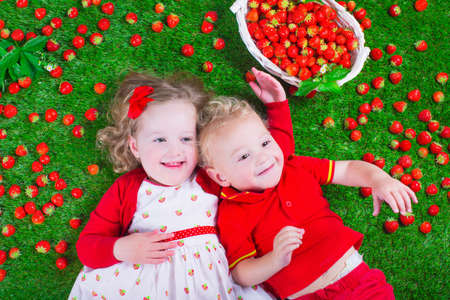 Child eating strawberry. Little girl and baby boy play and eat fresh ripe strawberries. Kids with fruit relaxing on a lawn. Children summer fun on a farm picking berry. photo