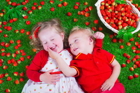 eating: Child eating strawberry. Little girl and baby boy play and eat fresh ripe strawberries. Kids with fruit relaxing on a lawn. Children summer fun on a farm picking berry.