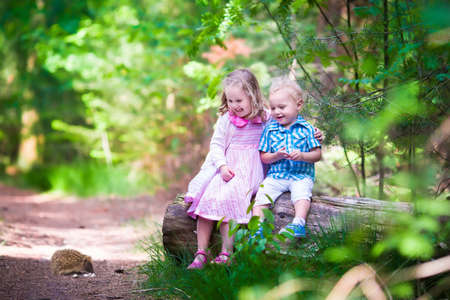 spring summer: Kids watching a hedgehog. Children hiking in the forest. Family outdoor fun in summer. Little girl and boy play with a wild animal. Hike with toddler child and baby. Preschooler kid in the park.
