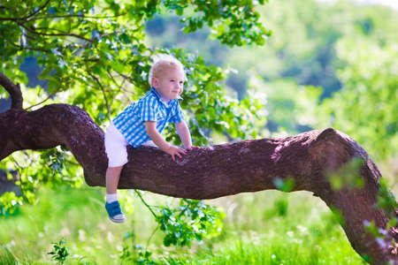Little boy hiking in a forest. Outdoor fun for family in country side. Summer hike with young children. Toddler kid playing in a park climbing a tree. Child running in the woods. Kids and climb.
