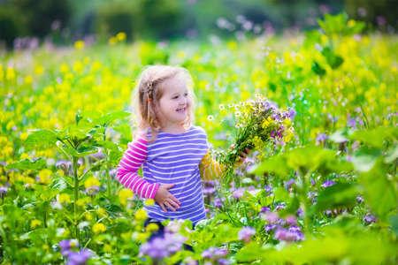 Enfant de cueillir des fleurs sauvages dans le domaine. Les enfants jouent dans une prairie et de choisir un bouquet de fleurs pour la mère le jour de l'été. Enfants jouant sur une ferme. fille en plein air au printemps enfant. vacances en famille dans le pays Banque d'images - 41607827