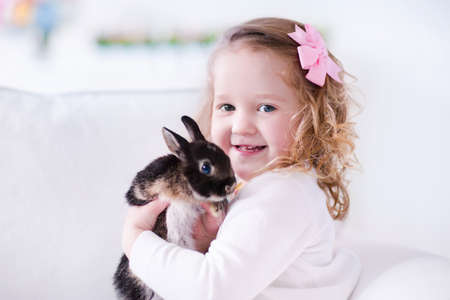 Child playing with a real rabbit. Kids play with pets. Little girl holding bunny. Children and animals at home or preschool. Cute curly toddler kid hugs her pet animal. Preschooler feeding rabbits. Stock Photo