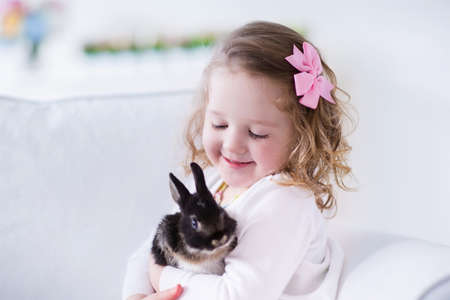 little girl dress: Child playing with a real rabbit. Kids play with pets. Little girl holding bunny. Children and animals at home or preschool. Cute curly toddler kid hugs her pet animal. Preschooler feeding rabbits. Stock Photo