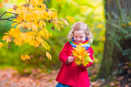 Little girl with yellow leaf. Child playing with autumn golden leaves. Kids play outdoors in the park. Children hiking in fall forest. Toddler kid under a maple tree on a sunny October day. Stock Photo