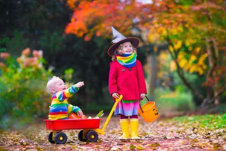 tricks: Little girl in witch costume and baby boy in wheel barrow holding a pumpkin playing in autumn park. Kids at Halloween trick or treat. Toddler with jack-o-lantern. Children with candy bucket in forest.