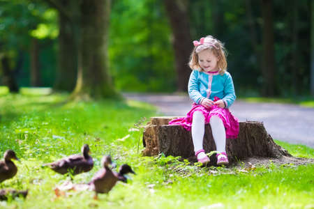 animals feeding: Little girl feeding duck in a summer park. Children feed birds and animals. Child playing outdoors. Kids play in sunny autumn forest. Toddler kid watching wild bird. Preschooler exploring nature. Stock Photo
