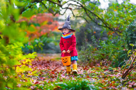horror: Little girl in witch costume playing in autumn park. Child having fun at Halloween trick or treat. Kids trick or treating.  Toddler kid with jack-o-lantern. Children with candy bucket in fall forest.