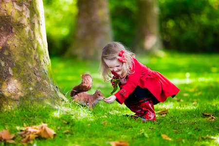 Girl feeding squirrel in autumn park. Little girl in red trench coat and rain boots watching wild animal in fall forest with golden oak and maple leaves. Children play outdoors. Kids playing with pets Archivio Fotografico