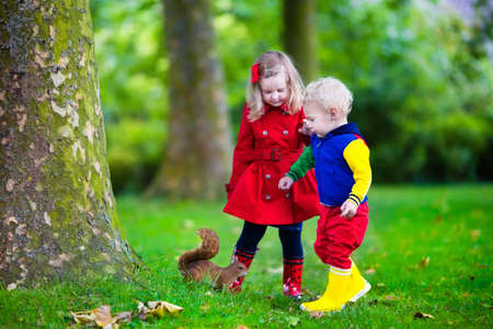 Kids feeding squirrel in autumn park. Little boy and girl in red coat and rain boots watch wild animals in fall forest with golden oak and maple leaves. Children play outdoors. Kids playing with pets