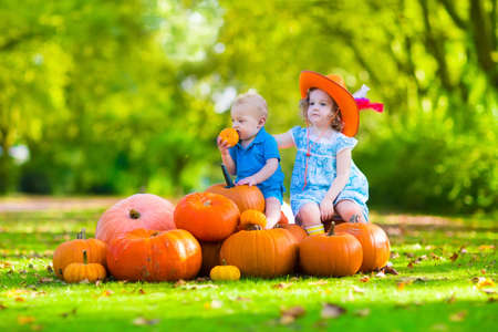 patches: Kids playing at pumpkin patch at Halloween. Children play and pick pumpkins on a farm. Toddler girl and baby boy in a wheel barrow harvest vegetables in autumn. Fall outdoor fun for family with child