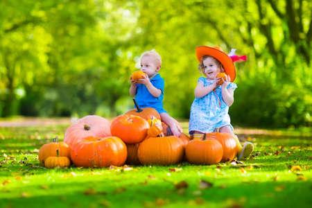calabazas de halloween: Niños jugando en el huerto de calabazas en Halloween. Los niños juegan y recoger calabazas en una granja. Muchacha del niño y bebé en una carretilla vehículos de la cosecha en otoño. Caída diversión al aire libre para una familia con niños