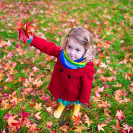 toddler playing: Little girl with yellow leaf. Child playing with autumn golden leaves. Kids play outdoors in the park. Children hiking in fall forest. Toddler kid under a maple tree on a sunny October day. Stock Photo