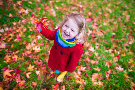 노란 잎을 가진 어린 소녀입니다. 가 황금 잎 노는 아이. 아이들은 야외 공원에서 재생할 수 있습니다. 가을 숲에서 하이킹 어린이. 화창한 10 월 하루에 스톡 콘텐츠