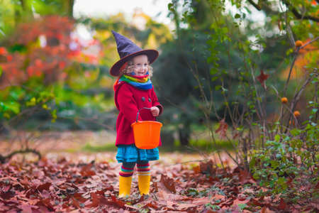 tricks: Little girl in witch costume playing in autumn park. Child having fun at Halloween trick or treat. Kids trick or treating.  Toddler kid with jack-o-lantern. Children with candy bucket in fall forest.