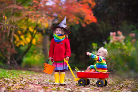 trick or treating: Little girl in witch costume and baby boy in wheel barrow holding a pumpkin playing in autumn park. Kids at Halloween trick or treat. Toddler with jack-o-lantern. Children with candy bucket in forest.