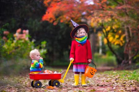 wiedźma: Mała dziewczynka w stroju czarownicy i chłopca w taczkach posiadający grę dyni w parku jesienią. Dzieci w sztuczki Halloween lub leczenia. Maluch z Jack-o-lantern. Dzieci z cukierkami wiadra w lesie. Zdjęcie Seryjne