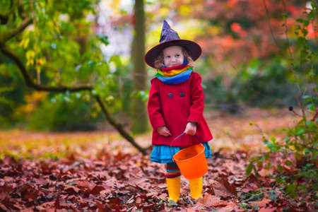 red dress: Little girl in witch costume playing in autumn park. Child having fun at Halloween trick or treat. Kids trick or treating.  Toddler kid with jack-o-lantern. Children with candy bucket in fall forest.