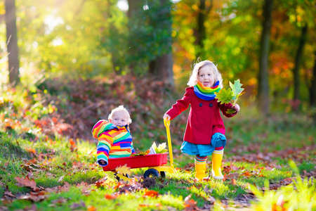 brothers: Brother and sister play in autumn park with golden leaves. Baby boy in a wheel barrow. Two kids, boy and girl walk in the forest on a sunny fall day. Children playing outdoors with yellow maple leaf.