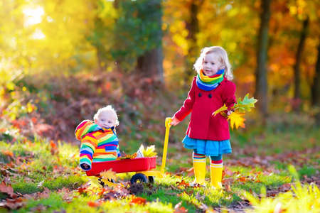 sunny season: Brother and sister play in autumn park with golden leaves. Baby boy in a wheel barrow. Two kids, boy and girl walk in the forest on a sunny fall day. Children playing outdoors with yellow maple leaf.