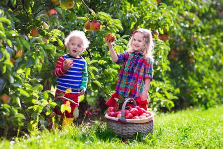 eating fruits: