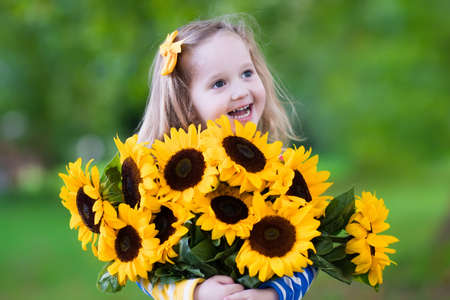 fun in the sun: Happy laughing little girl holding sunflower bouquet. Child playing with sunflowers. Kids picking fresh sun flowers in the garden. Children gardening in summer. Outdoor fun for family.