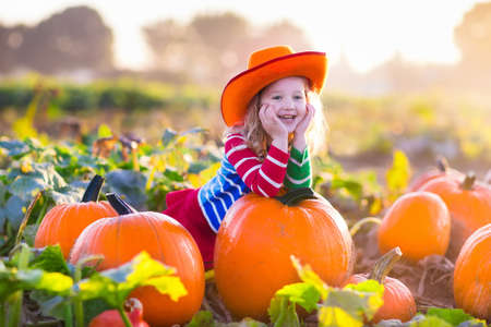 Little girl picking pumpkins on Halloween pumpkin patch. Child playing in field of squash. Kids pick ripe vegetables on a farm in Thanksgiving holiday season. Family with children having fun in autumn Archivio Fotografico