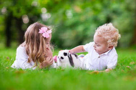 Children play with real rabbit. Brother and sister at Easter egg hunt with white pet bunny. Little baby boy and toddler girl playing with animal in the garden. Summer outdoor fun for kids with pets. Stock Photo