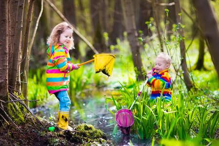 botas de lluvia: Niños que juegan al aire libre. Niños en edad preescolar que cogen la rana con la red. El muchacho y la muchacha de la pesca en el río del bosque. Aventura kindergarten viaje de un día en la naturaleza salvaje, joven senderismo explorador y animales que miran.