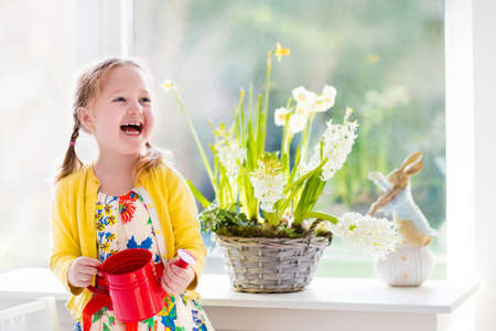 Cute girl watering first spring flowers. Easter home interior and decoration. Child taking care of plants. Kid with water can. Toddler with toy bunny. Little gardener with hyacinths and daffodils. Stockfoto