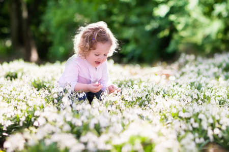 snow drops: Funny little girl playing in sunny flower meadow. Baby on Easter egg hunt. Toddler child picking first spring flowers in the garden. Kids play outdoors in summer. Cute gardener planting snow drops. Stock Photo