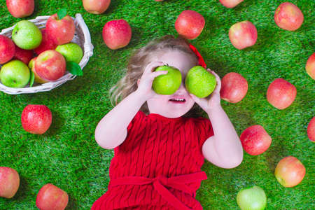 Child eating apple. Little girl playing peek a boo holding fresh ripe apples. Kids eating snack relaxing on a lawn. Children summer fun on a farm picking healthy fruit. Stock Photo