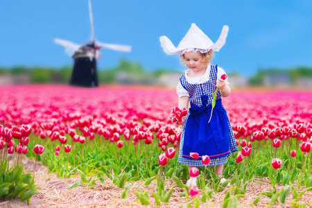 Adorable curly toddler girl wearing Dutch traditional national costume dress and hat playing in a field of blooming tulips next to a windmill in Amsterdam region, Holland, Netherlands Stock Photo