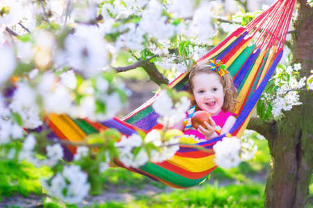 hammock: Child relaxing in hammock. Cute little toddler girl playing in a blooming sunny cherry garden with white flowers. Kids having fun eating apple for healthy snack during spring vacation on a farm with fruit tree orchard. Stock Photo