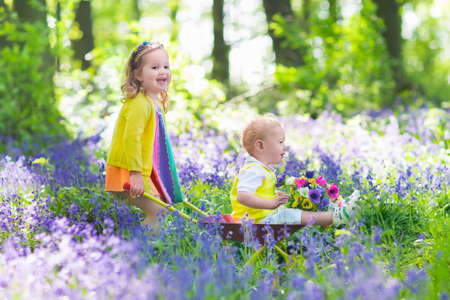 ni�o empujando: Kids gardening. Children playing outdoors. Little girl and baby boy, brother and sister, working in the garden, planting flowers, watering flower bed. Child pushing wheel barrow.
