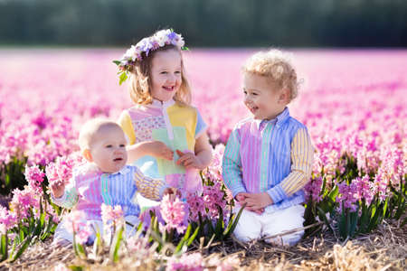 flower garden: Three children playing in beautiful hyacinth flower field. Little girl, toddler boy and baby play in sunny summer garden with purple flowers. Kids having fun outdoors. Brothers and sister together.