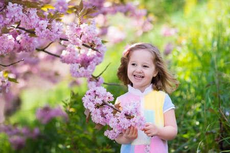 Niña feliz que juega bajo el árbol de cerezo en flor con flores de color rosa. Niño que sostiene la flor de sakura. la diversión de verano para familias con niños al aire libre en un hermoso jardín de primavera. Niño con la flor en Pascua. Foto de archivo