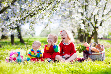 Little children eating lunch outdoors. Kids with picnic basket in spring garden with blooming apple and cherry tree. Preschooler girl, toddler boy and baby eat and drink in summer park on blanket.