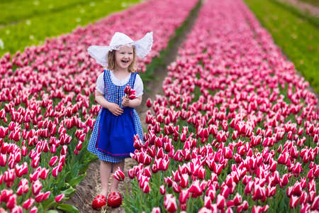 dutch girl: Adorable little girl wearing Dutch traditional national costume dress, wooden clogs and hat playing in a field of blooming tulips next to a windmill in Amsterdam region, Holland, Netherlands