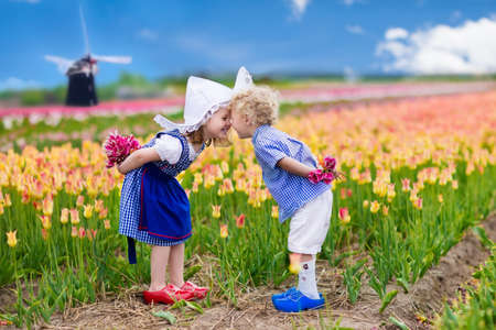 dutch typical: Happy Dutch children playing in blooming tulip flowers field. Boy and girl wearing traditional national costume, wooden clogs and hat play with tulips next to a windmill in Holland, Netherlands