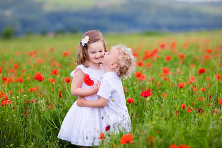 children at play: Little curly blond boy and girl play in poppy flower field. Child picking red poppies. Toddler kid in summer meadow. Family vacation in the country. Children pick flowers, hug and kiss. Siblings love.