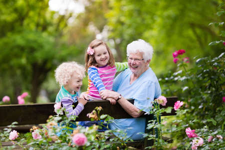 boy lady: Happy senior lady playing with little boy and girl in blooming rose garden. Grandmother with grand children sitting on a bench in summer park with beautiful flowers. Kids gardening with grandparent. Stock Photo