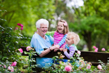 Happy senior lady playing with little boy and girl in blooming rose garden. Grandmother with grand children sitting on a bench in summer park with beautiful flowers. Kids gardening with grandparent. Foto de archivo